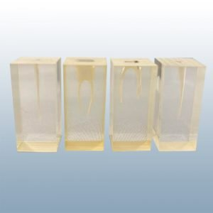 S1 Set - Endodontic Blocks (No Crowns)