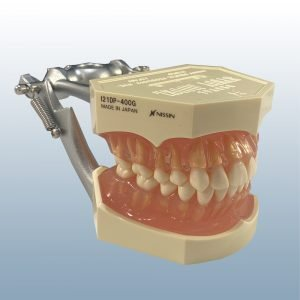 I21DP-400G - 28 Tooth